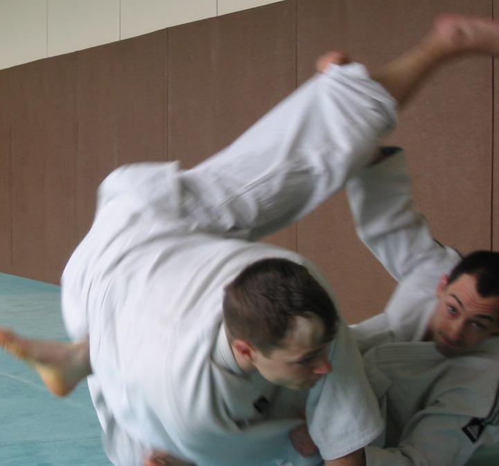 ry MMA的文章 MMA 和巴西柔术博客图片