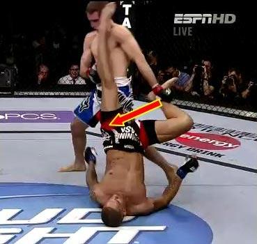 UFC格斗士